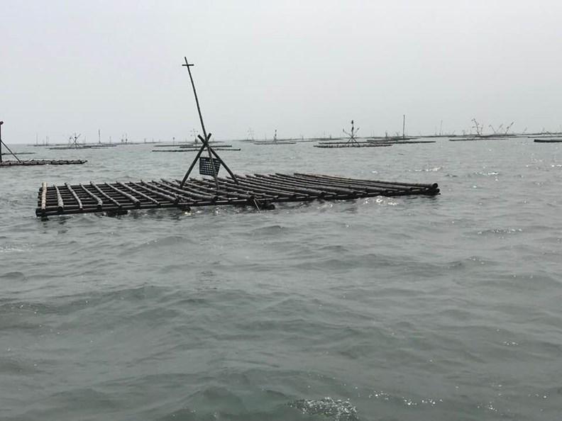 嘉義一帶的漁村景象。圖片取自臉書