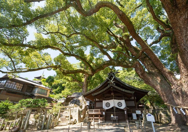 尾道市。圖片取自尾道観光協会臉書,ononavi.jp