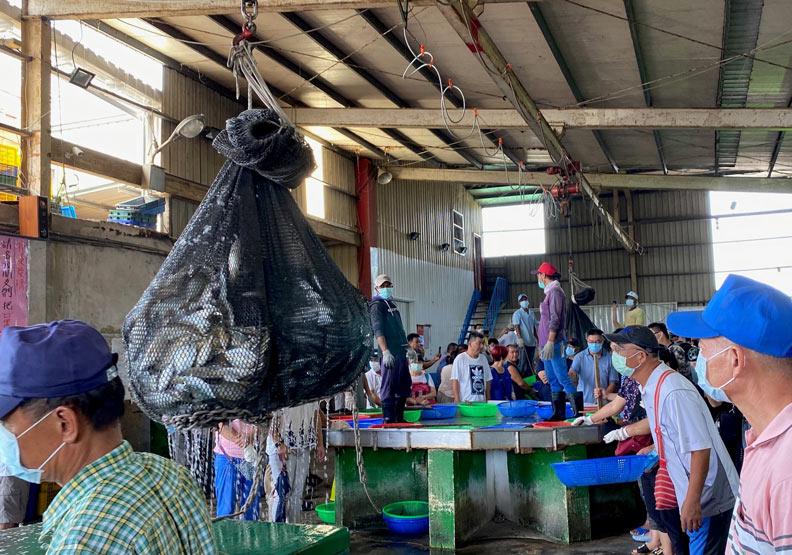 明發定置漁場的拍賣魚貨現場。