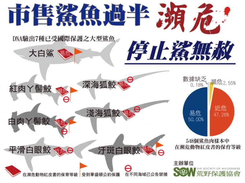 根據2013年荒野保護協會發表的「愛鯊DNA檢測計畫」資料顯示,當時有98%以上鯊魚肉樣本來自於近危、易危或瀕危等級的鯊魚品種。( 圖片來源:荒野保護協會)