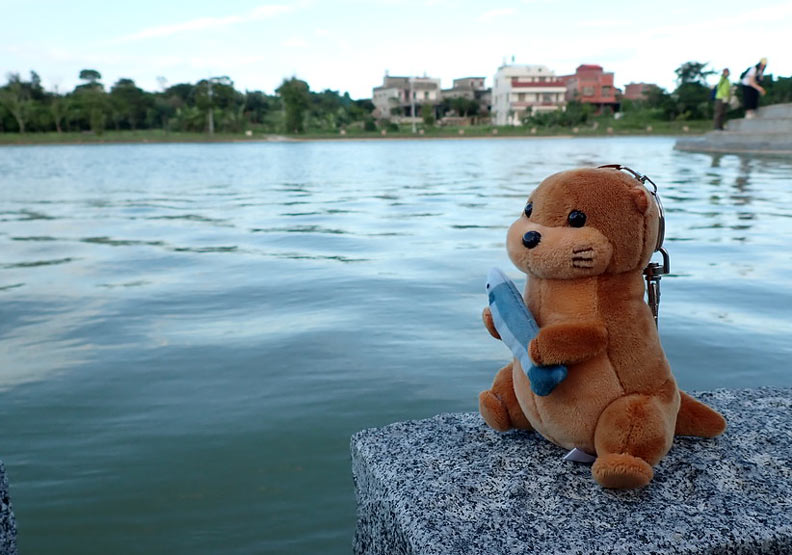 台灣水環境第二屆「金蘋果、爛蘋果獎」 亂象仍多