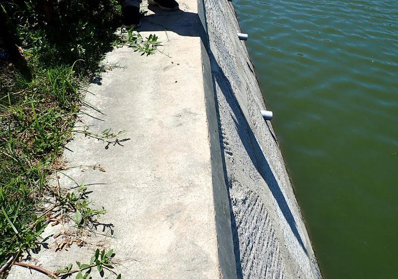金沙溪流域水環境改善計畫(第一期)的陡直水泥護岸。圖片提供:台灣河溪網