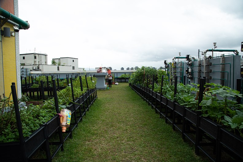 屋頂開心農場是住戶的最愛。