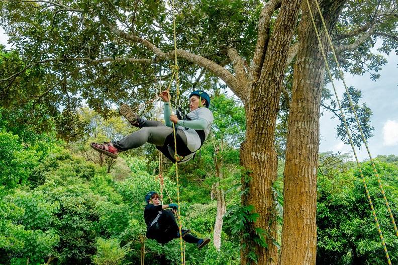 部落工作假期_攀樹體驗。
