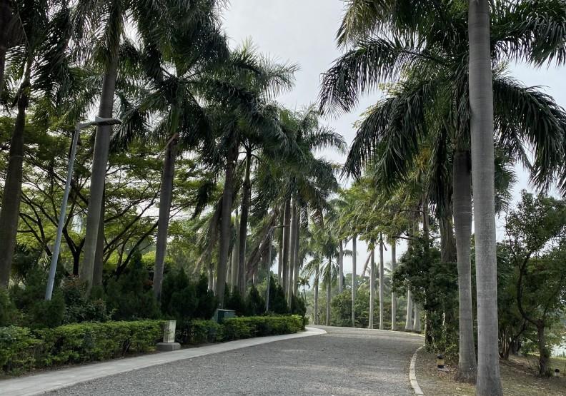 高雄市立美術館的園區。