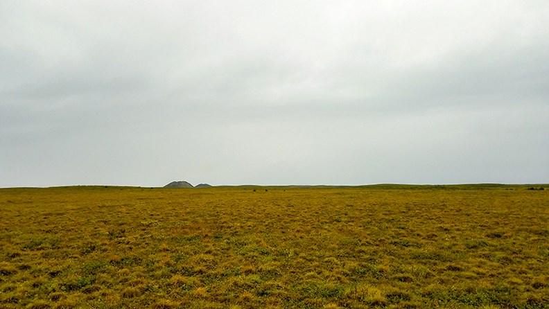 前往圖克鎮之前,路旁都是這樣的凍原,一棵樹都沒有,只有冰丘(Pingos)。