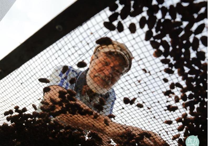 「邱式巧克力」是屏東第一個本土巧克力品牌,創辦人邱銘松的可可豆甚至外銷到日本、韓國、香港。取自食力
