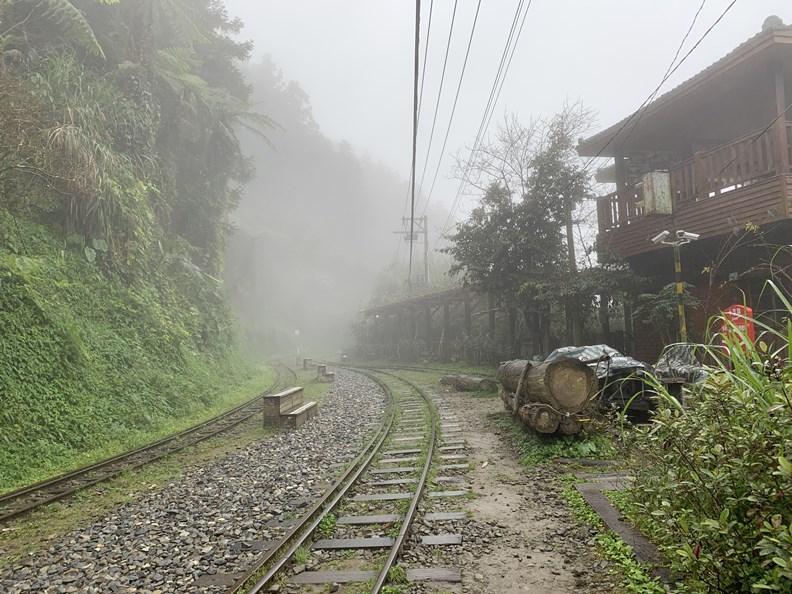 目前能通行的林鐵路線,最遠只到十字路車站。
