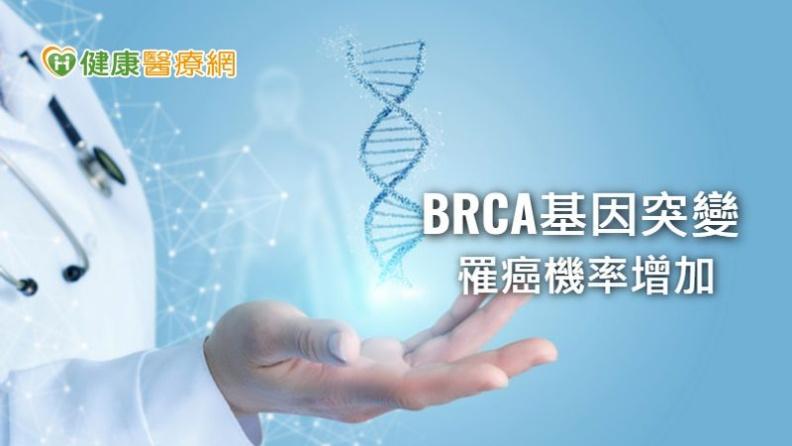 BRCA基因只要有突變,終身罹患乳癌的機率為6成、罹患卵巢癌的機率高達2、3成,且會增加胰臟癌及男性前列腺癌的風險。取自健康醫療網