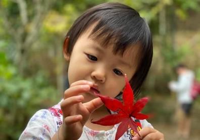 鼓勵孩子戶外活動 澳研究:可抵消玩3C的負面影響