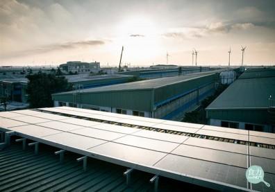 70歲彰化養豬大王把糞尿變綠金!豬舍屋頂蓋光電板,每年減少3萬噸溫室氣體