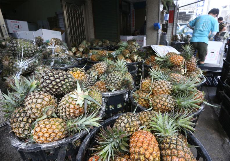 台灣鳳梨仰賴出口,內銷有限。遠見蘇義傑攝影