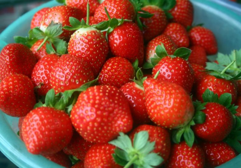 高C草莓嬌嫩難保存?專家教你延長賞味期限、更耐放