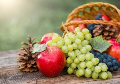 老來怕忘東忘西?美研究:吃對可可、蘋果等食物,補充黃烷醇或可改善