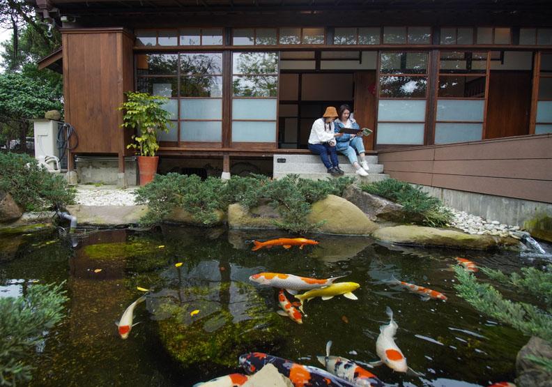 松山療養所所長宿舍靜心苑日式庭園養鯉魚,台北市文化局提供。