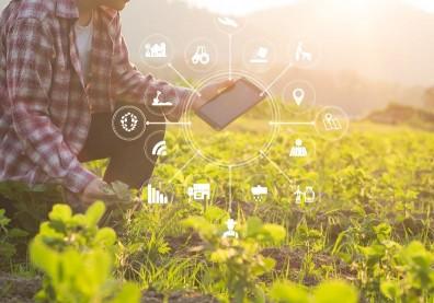極端氣候、農業人口老化!「科技農業」掌握3關鍵技術,提升產業競爭力