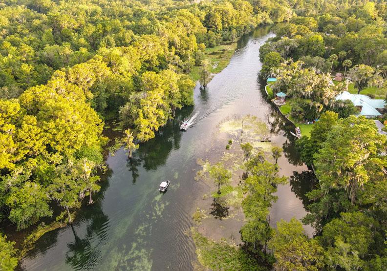 熱帶雨林正在逐漸消失,取自Unsplash by Luiz Cent。
