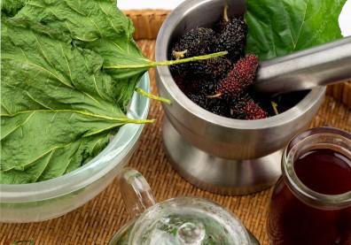 頭痛、頭暈好像快感冒了?來杯熱桑葉茶,潤肺止咳有助舒緩風熱型感冒