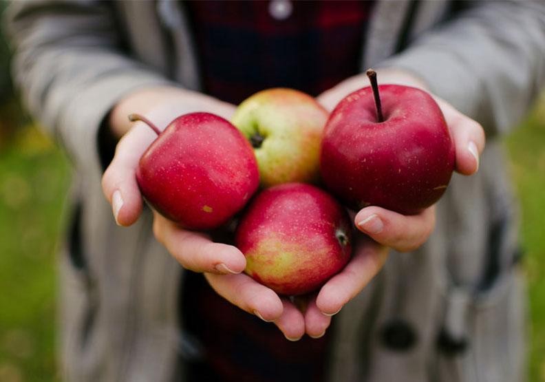 蘋果、番茄都上榜!美國EWG公布「12大蔬果農藥」排行榜