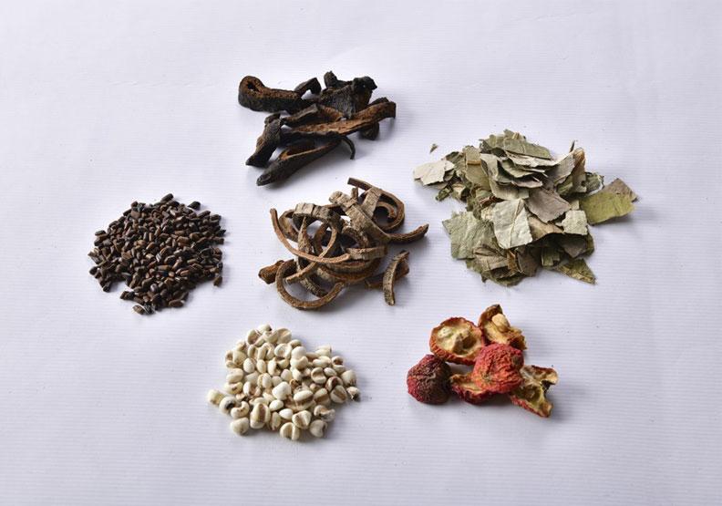 「輕身去濕茶」材料有:薏苡仁、 荷葉、 陳皮、 山楂、厚朴、 決明子。幸福文化出版提供