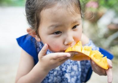 芒果營養成分新發現!含抗神經系統發炎植化素,有治療阿茲海默症潛力