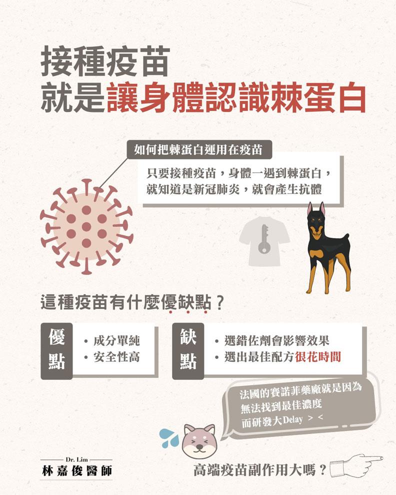 接種疫苗就是讓身體認識棘蛋白。林嘉俊醫師提供