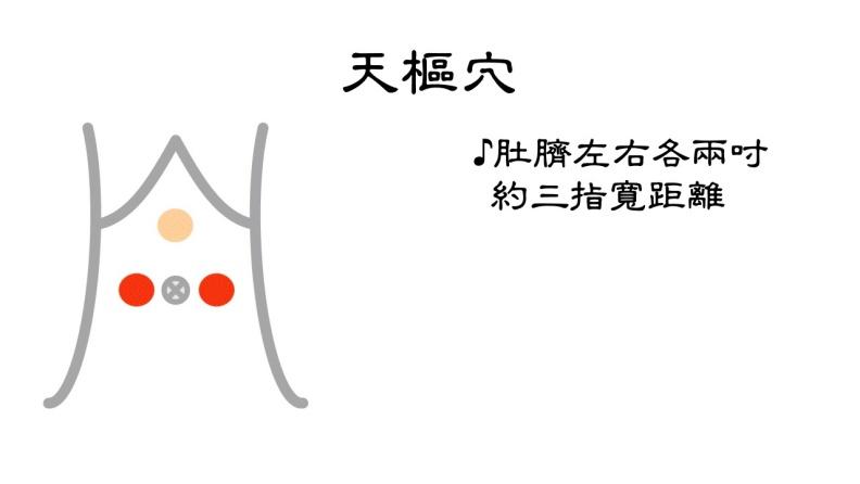 天樞穴位置。台北市聯合醫院張馨予醫師提供
