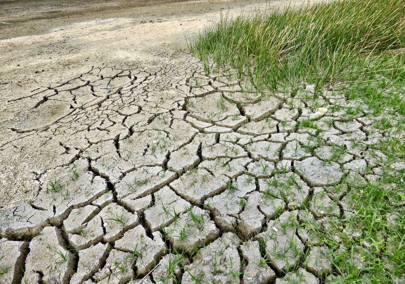 自然災害增加,缺水旱象頻仍,僅為情境配圖。圖片來自pixabay