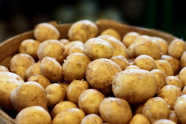 常被誤認是蔬菜的食物:馬鈴薯