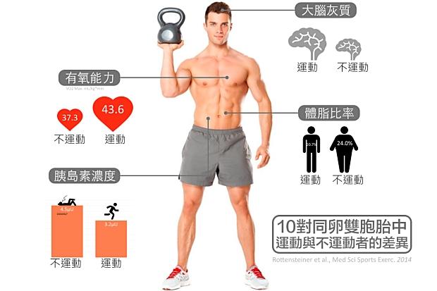 用運動逆轉肥胖宿命(而且頭好壯壯!)