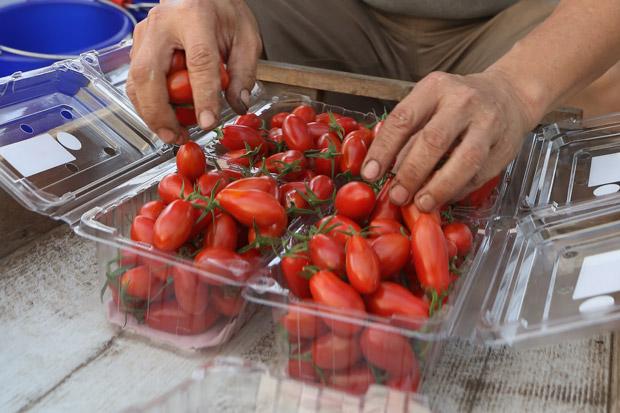 番茄:零嘴、做菜,怎麼挑?