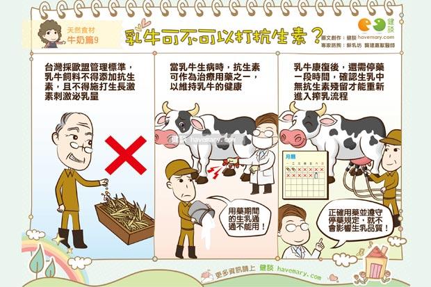 乳牛可不可以打抗生素?