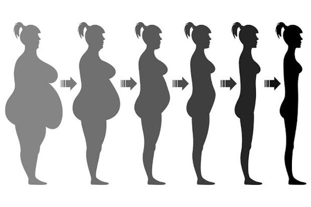BMI值是否可信?標準為何?