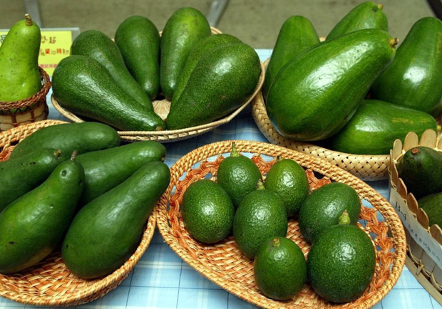 金氏世界紀錄掛保證,最營養的水果原來是酪梨!