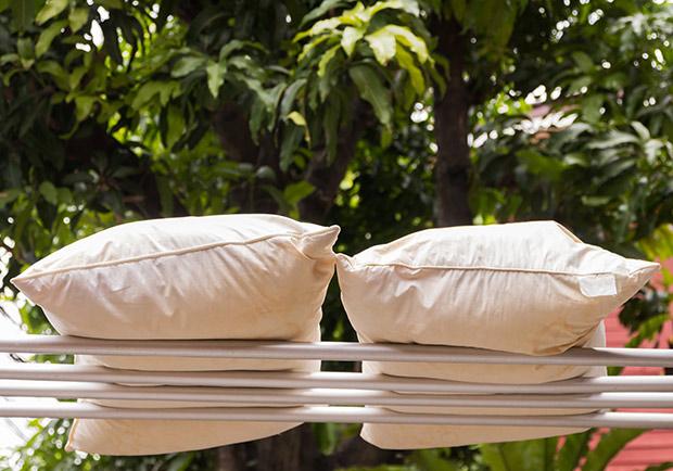 枕頭裝黑塑膠袋曬太陽殺菌?寢具清潔專家這樣建議