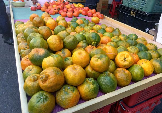網傳柑橘會泡藥所以能半年不壞?乳白色液體是什麼?