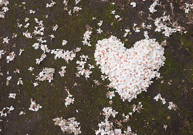 不被愛的創造愛