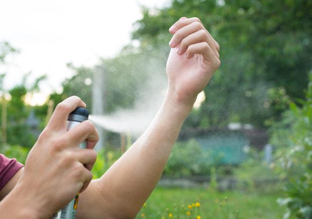 小黑蚊跟蚊子有什麼不同?怎麼做才不會被叮?全攻略剖析