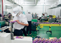 廣西、雲南設廠 餵養東協加一近20億張嘴