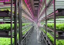 農業,下世代最具爆發力的明星產業