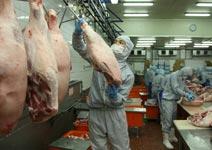 新興市場需求增,「人工肉」行情看俏