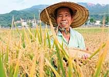 陳永山 用良心種的米 每口都健康