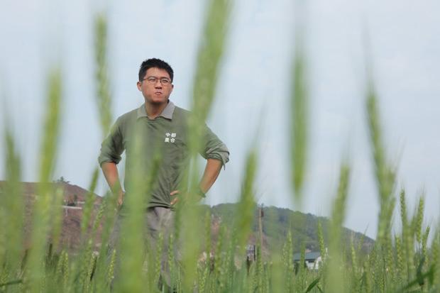 復耕台灣五穀雜糧 博士種田照樣精采