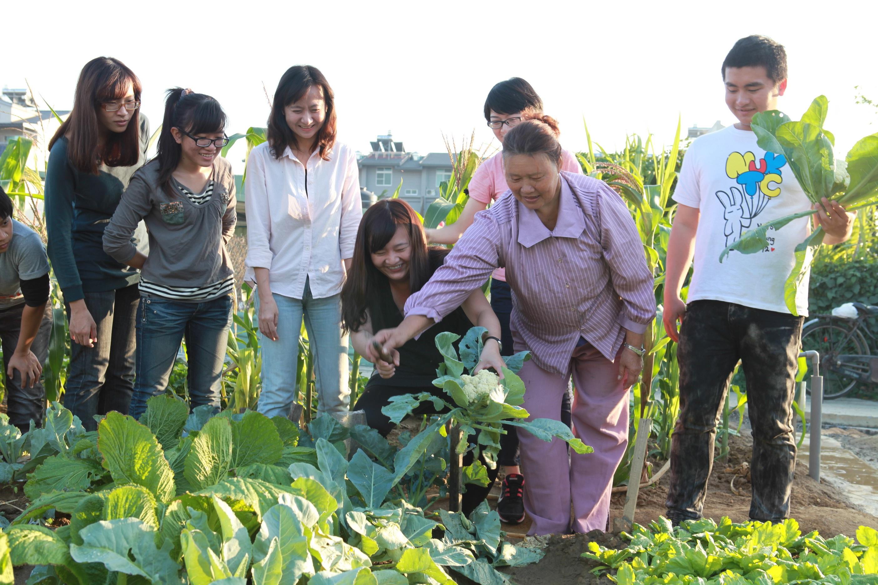 大學教學重實務 菜園也能是教室!