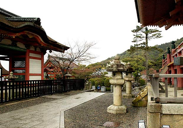 kyoto和服體驗!櫻花、神社、京都