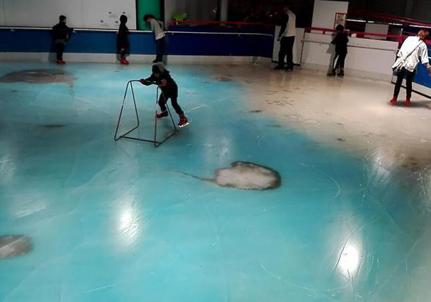冰封真魚引惡評 日本溜冰場被迫關門