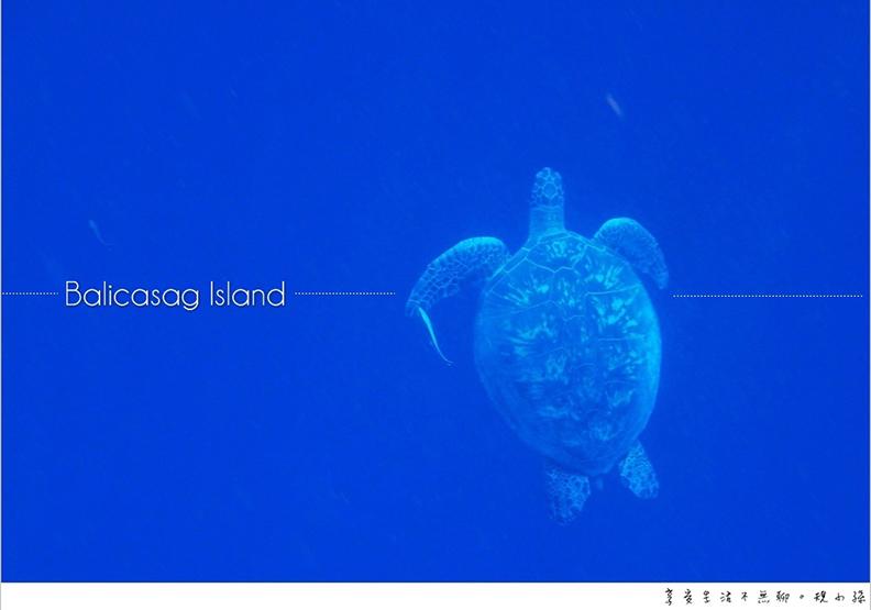 宿霧薄荷島之旅 跳進巴里卡薩大斷層的湛藍大海