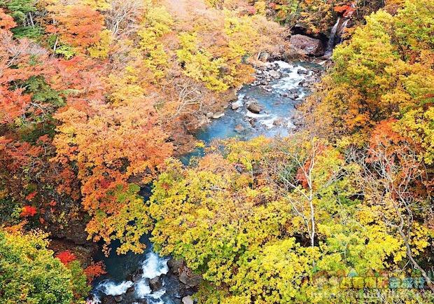 這樣的景色美翻眾人!前進日本松川溪谷賞絕美楓葉