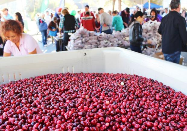 給我一顆小紅莓,我給你加拿大小鎮的歡樂慶典!