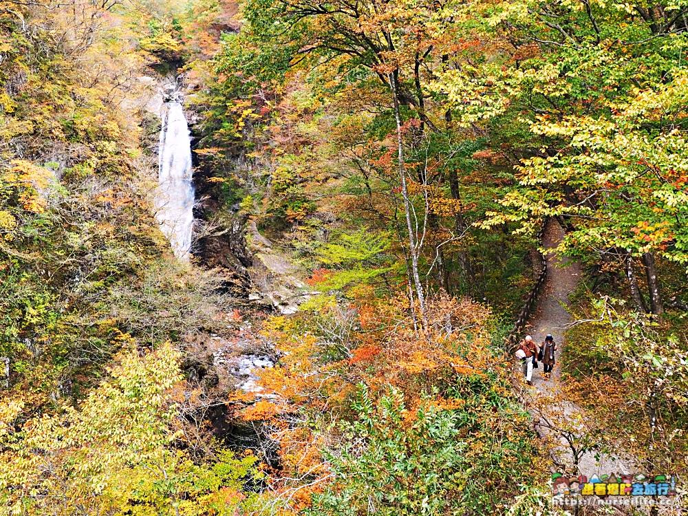 秋保大瀑布,在日本名勝一覽秋水貫穿美麗紅霞!